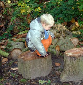 spelen in het bos op een boomstam